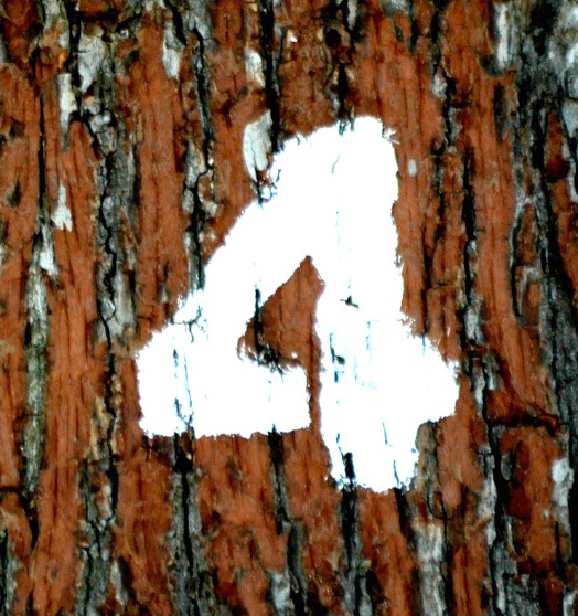 a number 4 some/used under CC BY-SA 2.0/cropped from original.