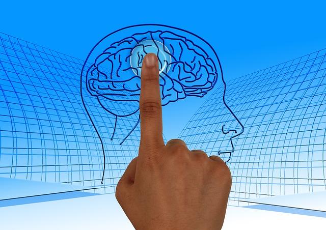 body_memorize_brain