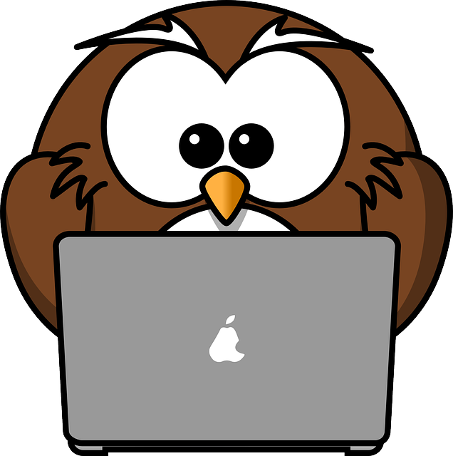 body_owl_computer