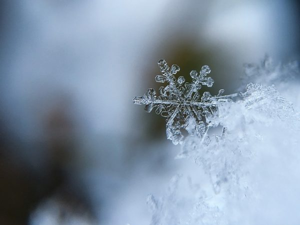 body_snowflake