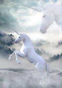 unicorn-1737897_640