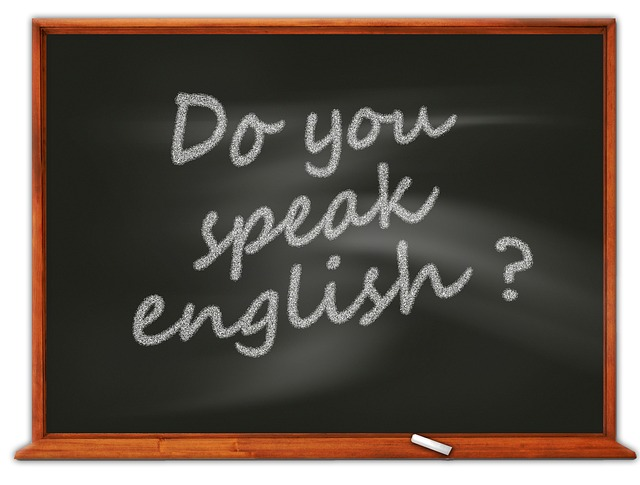 feature_do_you_speak_english